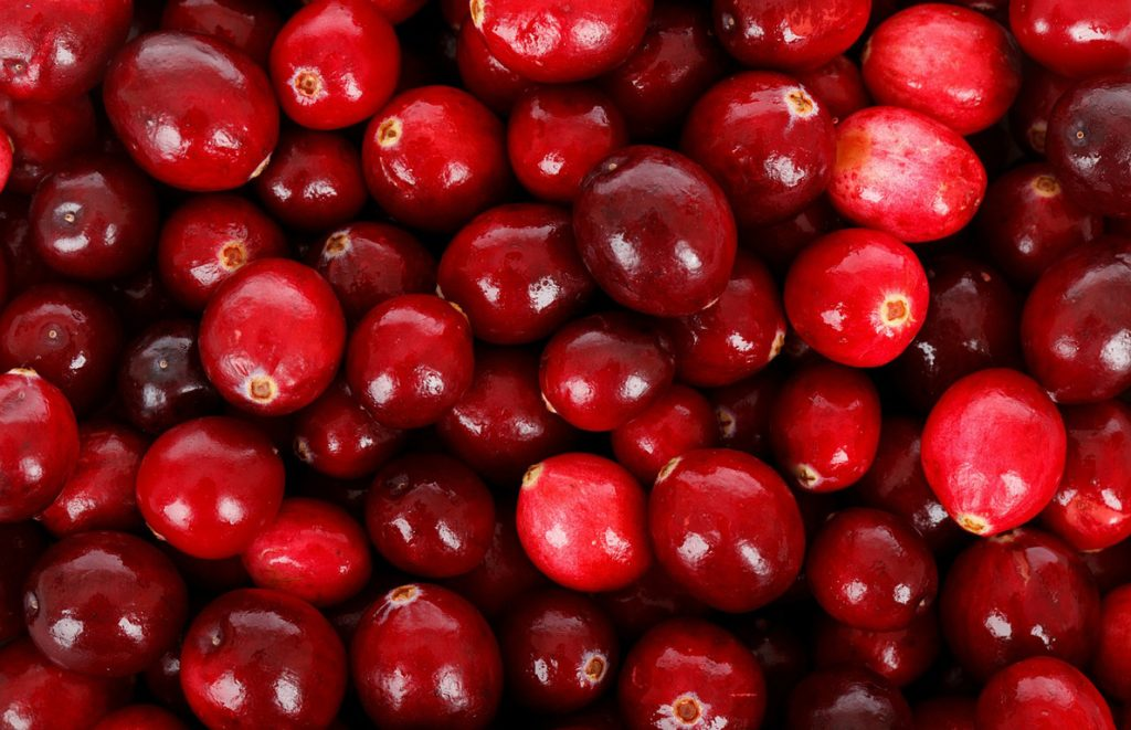 How Cranberries Are Important For Kidneys Health?